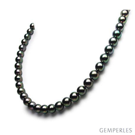 Collana di Perle Akoya Nansei - Giapponesi Nere - 7/7.5mm, AAA   Gemperles