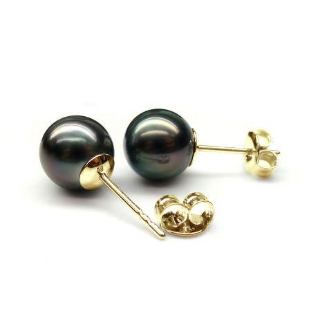 Boucles oreilles clous or jaune - Perles de Tahiti noires
