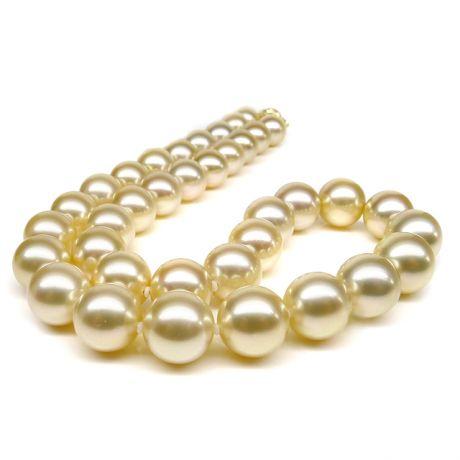 Collier de perles d'Australie champagnes - 10/12mm - AAB